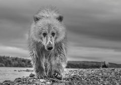 Ted, Archival Pigment Print, 2018, Contemporary Black and White Photography
