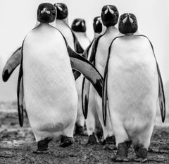 Wise Guys, Archival Pigment Print, Black and White Photography