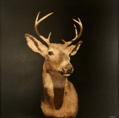 Buck Head by Dawne Raulet, Large Framed Mixed Media on Panel Animal Painting