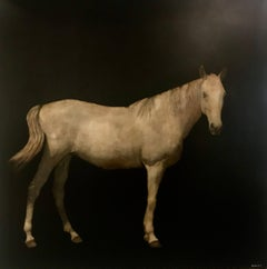 Kentucky Colt, Square Contemporary Mixed Media on Board Horse Painting