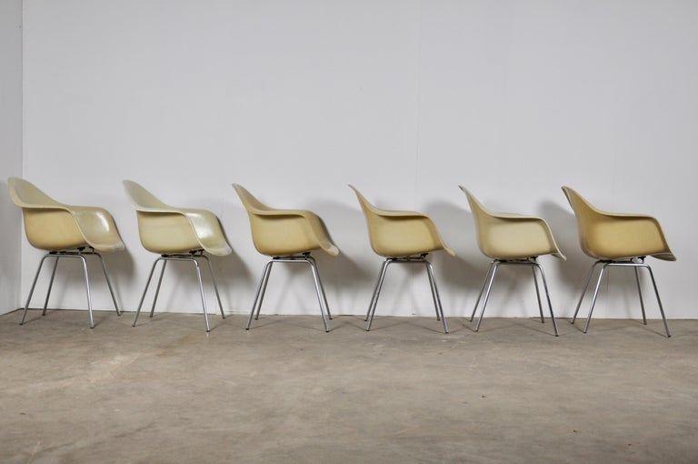 Central American DAX Dining Chairs by Charles and Ray Eames for Herman Miller 1960s Set of 6 For Sale
