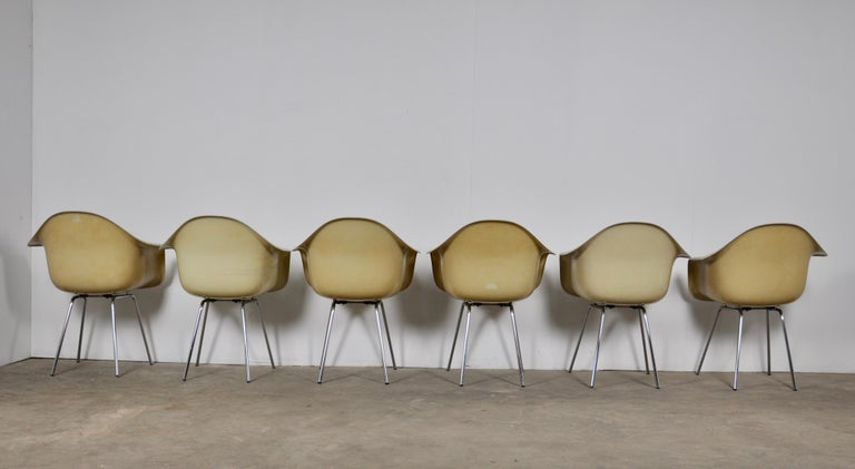 DAX Dining Chairs by Charles and Ray Eames for Herman Miller 1960s Set of 6 In Good Condition For Sale In Lasne, BE