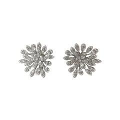 Dazzling Silver & Stone Starlet Earrings
