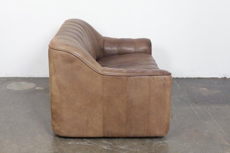 Mid-Century Modern De Sede DS 44 2-Seat Sofa in Buffalo Leather, Switzerland, 1970s For Sale