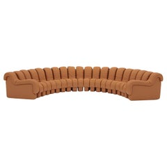 De Sede DS-600 Snake-Shape Modular Sofa in Cuoio Leather and Adjustable Elements
