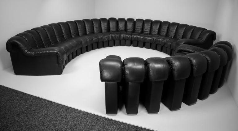 De Sede DS 600 Snake Sofas in Full Black Leather by Ueli Berger Switzerland 1972 For Sale 6