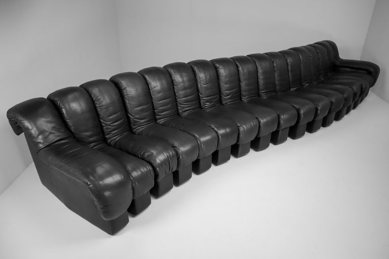 De Sede DS 600 Snake Sofas in Full Black Leather by Ueli Berger Switzerland 1972 For Sale 2