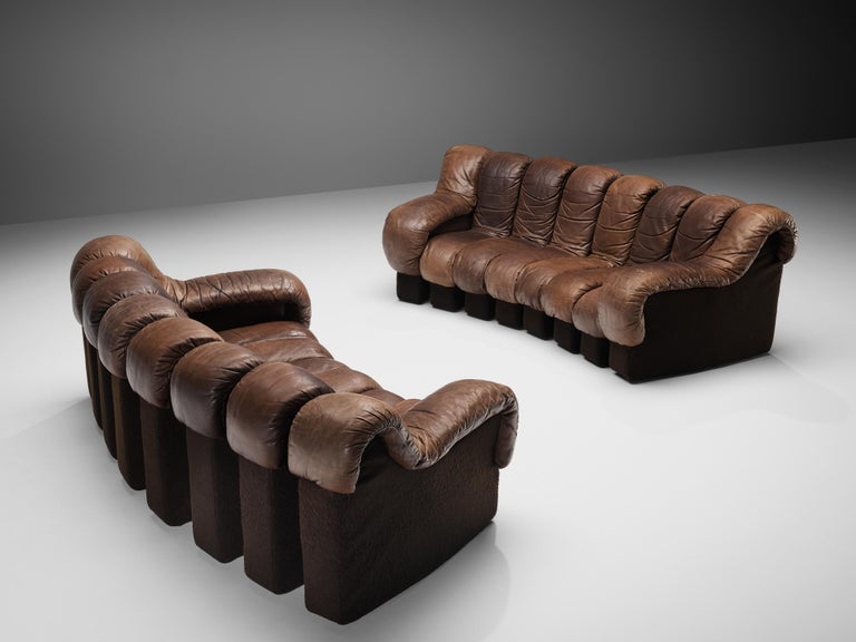 De Sede 'Snake' DS-600 sofas, brown leather, plastic, Switzerland, design 1972  De Sede 'Snake' sofa in smooth brown leather with patina. A design by Ueli Bergere, Elenora Peduzzi-Riva, Heinz Ulrich and Klaus Vogt at De Sede, Switzerland. De Sede