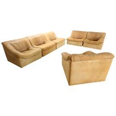De Sede, Ds46 6 Pieces, Living Room Set in Buffalo Leather, Switzerland, 1970s