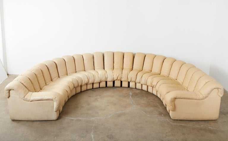 Mid-Century Modern De Sede DS600 24 Piece Non-Stop Leather Sectional Snake Sofa For Sale
