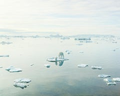 Polar Bear, PERNiCiEM