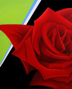 Another Point of View Too-Brilliant Red Rose 40 X 32""