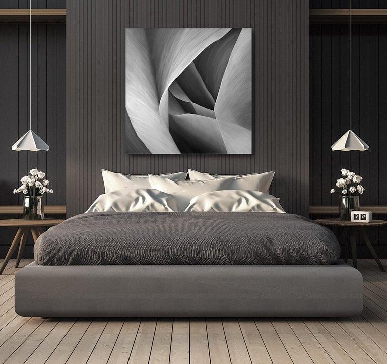 Grey Petals Untitled 29 40 X 40 - Painting by Deborah Bigeleisen