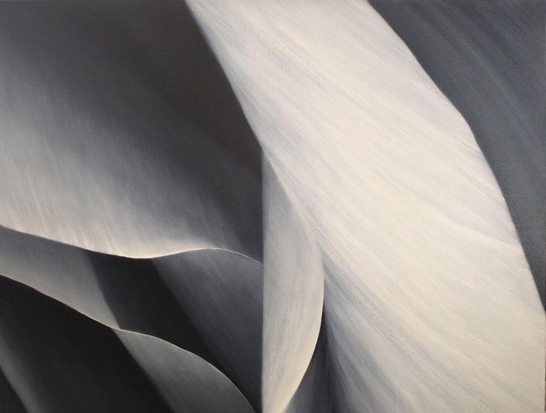 Grey Pedals - Untitled 29  40 X 40 Oil on canvas