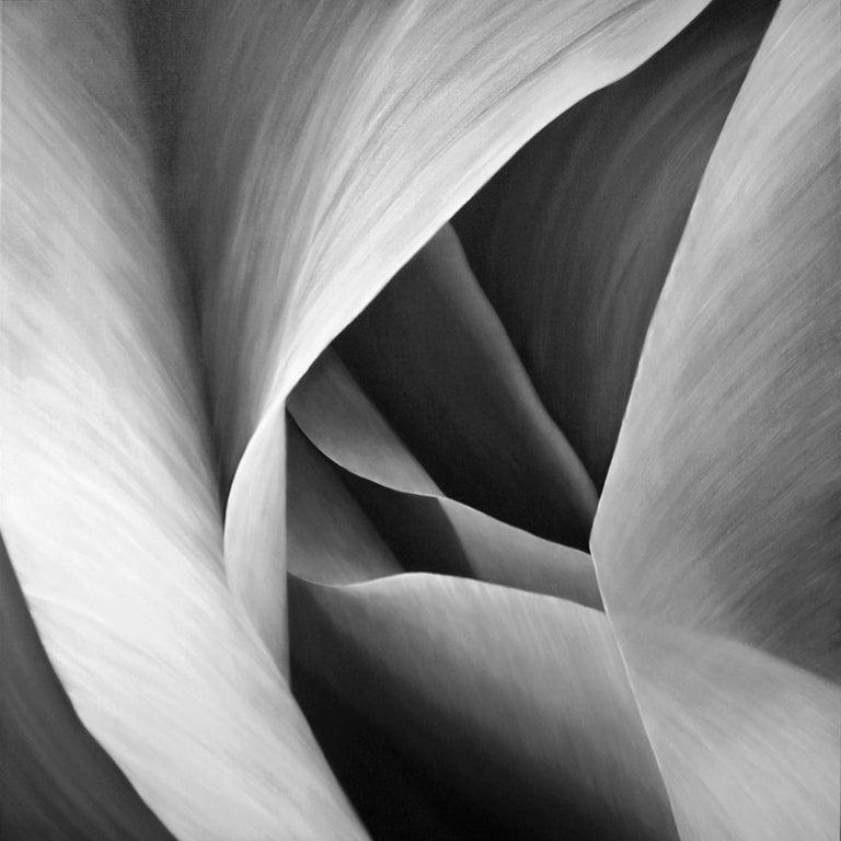 Deborah Bigeleisen Abstract Painting - Grey Petals Untitled 29 40 X 40