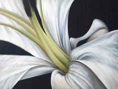 Untitled No. 8 (horizontal view)