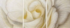 Cotton Canvas Still-life Prints