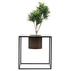 DeCastelli Riviera Pots 1 Flower 60 Planter in Stainless Steel by Aldo Cibic