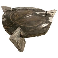 """Decay of Time"" Solid Zinc and Petrified Wood Circular Coffee Table"