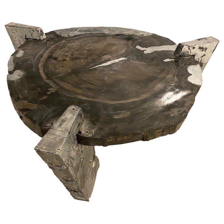 """Decay of Time"" Solid Zinc and Petrified Wood Circular Coffee Table For Sale"