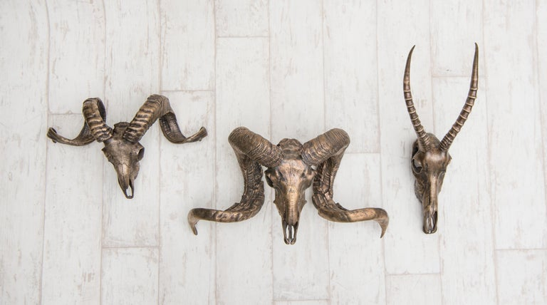 Burnished Decorative Bronze Tuscan Sheep Skull for wall mount or table accent For Sale