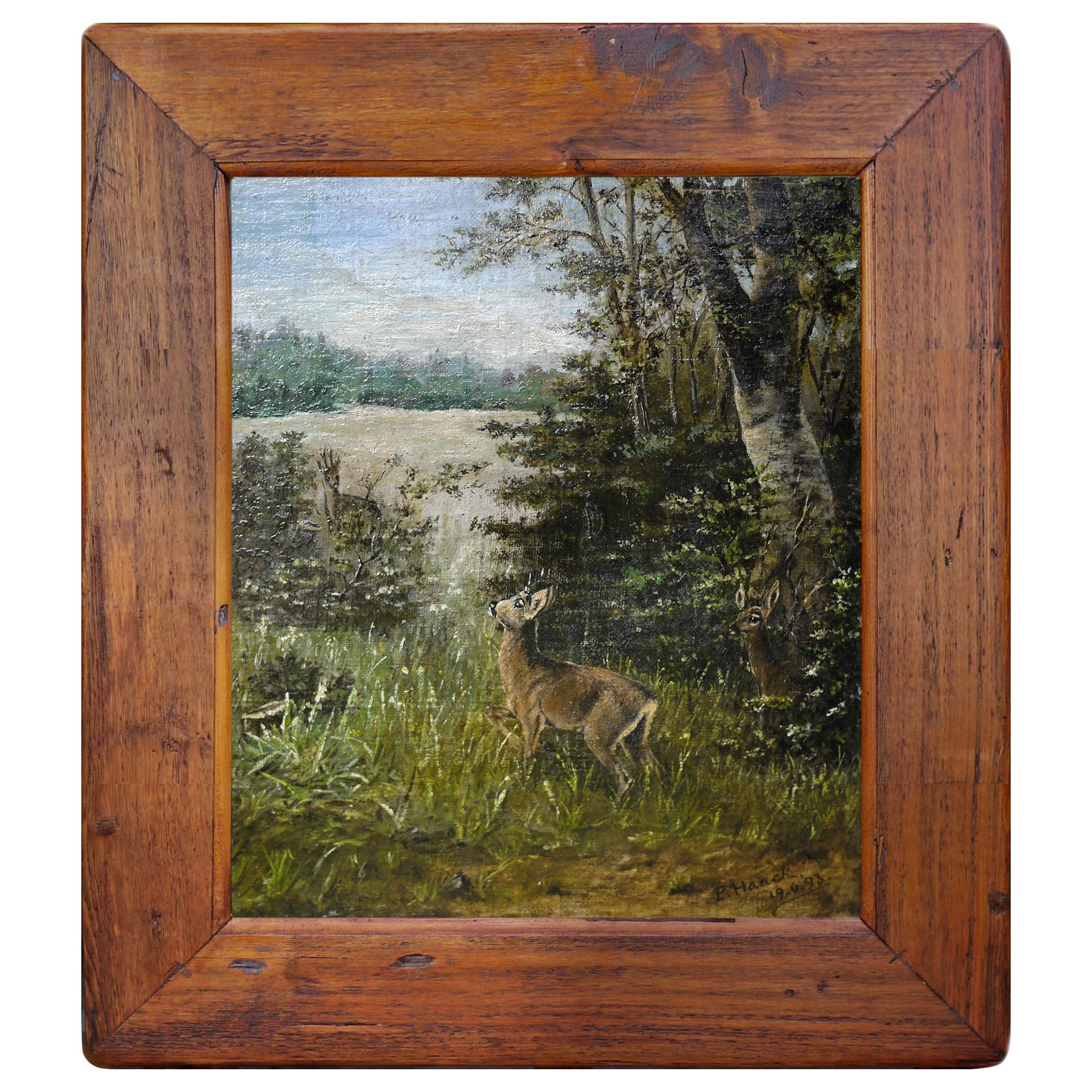 Deer Painting, Animals Oil on Canvas by P. Haack, 1893