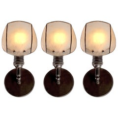 Delicate Leaded Sea Shell Sconces