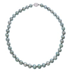 Delicately Colored South Sea Pearl Necklace with Gold Catch