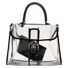 Delvaux Brillant X-Ray Limited Edition