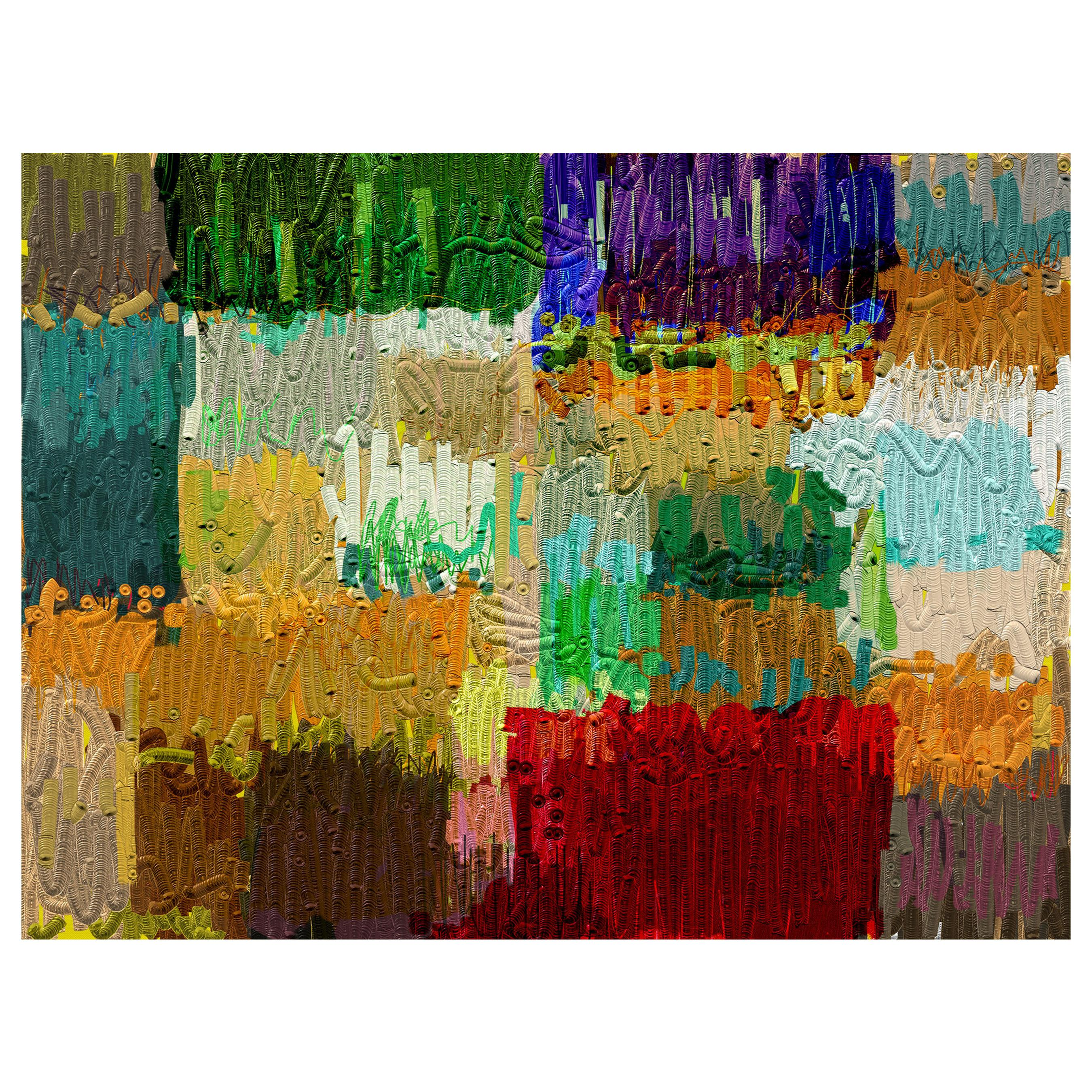 "Abstract Archival Digital Fine Art Print, ""Denali #786"" William P. Montgomery"