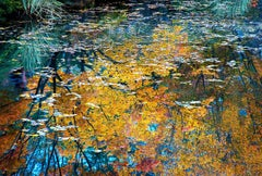 Monet's Dream by Dennis Sabo, Contemporary Abstract Photography