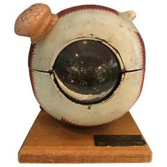 Denoyer-Geppert Co. Anatomical Educational Eye Model
