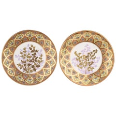 Derby Porcelain Aesthetic Period Gilt and Enameled Botanical Cabinet Plate Pair