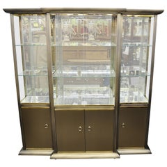 Design Institute of America Brass and Bronze Mirror Display Case Cabinet Curio