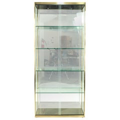 Design Institute of America Midcentury Brushed Brass and Glass Display Case