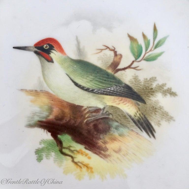 Minton Porcelain Dessert Service, Named Birds by Joseph Smith, Victorian 1851 For Sale 5