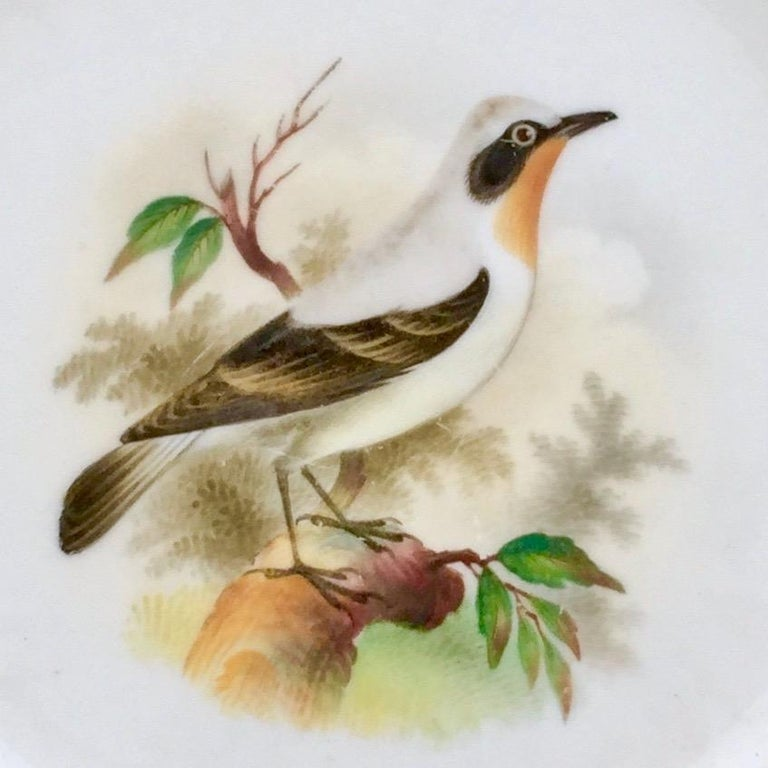 Minton Porcelain Dessert Service, Named Birds by Joseph Smith, Victorian 1851 For Sale 8