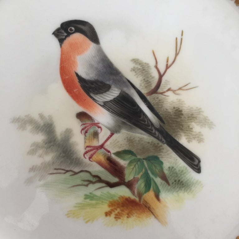 Minton Porcelain Dessert Service, Named Birds by Joseph Smith, Victorian 1851 For Sale 9