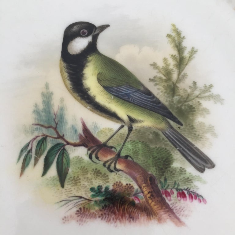 Minton Porcelain Dessert Service, Named Birds by Joseph Smith, Victorian 1851 For Sale 10
