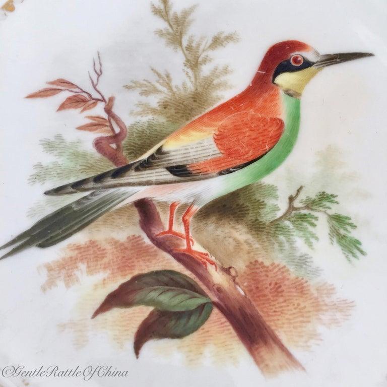 Minton Porcelain Dessert Service, Named Birds by Joseph Smith, Victorian 1851 For Sale 1