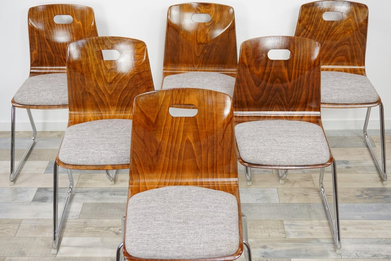 Set of six chairs, Industrial and retro look deutch design by Pagwood Pagholz and Thur Op seat from the 1960s, composed of a chrome sleg base feet, a pagwood shell wearing a comfy grey fabric seat.
