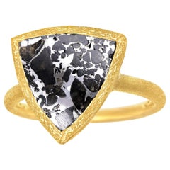Devta Doolan Reflective Meteorite Gold One of a Kind Solitaire Ring