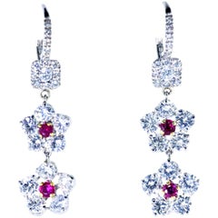 Diamond and Ruby Earrings, Pierre/Famille