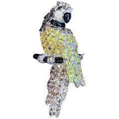 Diamond Parrot Brooch
