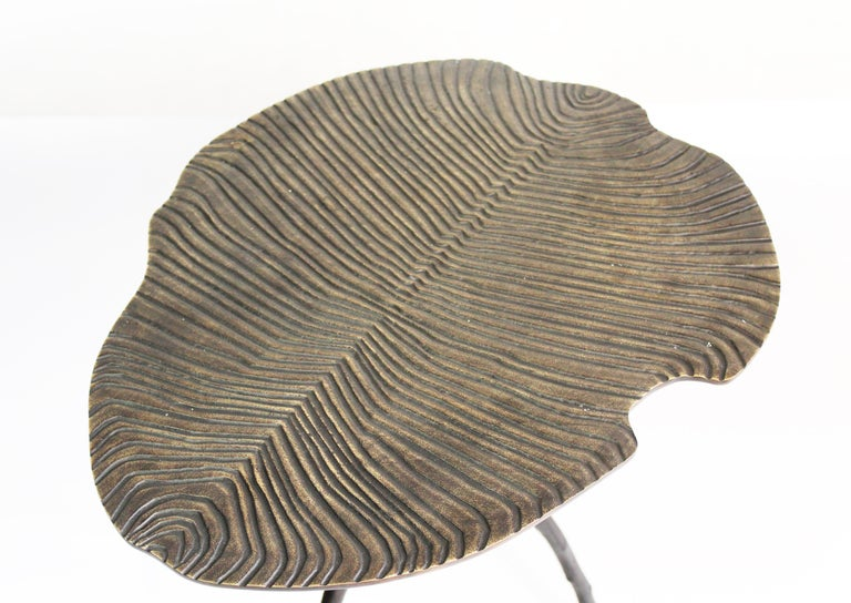 From this side table, 560 millions of years are contemplating us. Done in bronze by a French