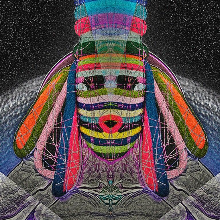 Digital Print, Mask_1 by Tessa Koot For Sale 1