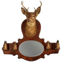 DIMS Vintage Taxidermy Deer Wall Mount Hat Rack with Mirror, circa 1940