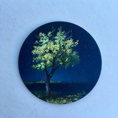 Dina Brodsky, Tree, Mid-Spring, realist oil on copper miniature tondo, 2018
