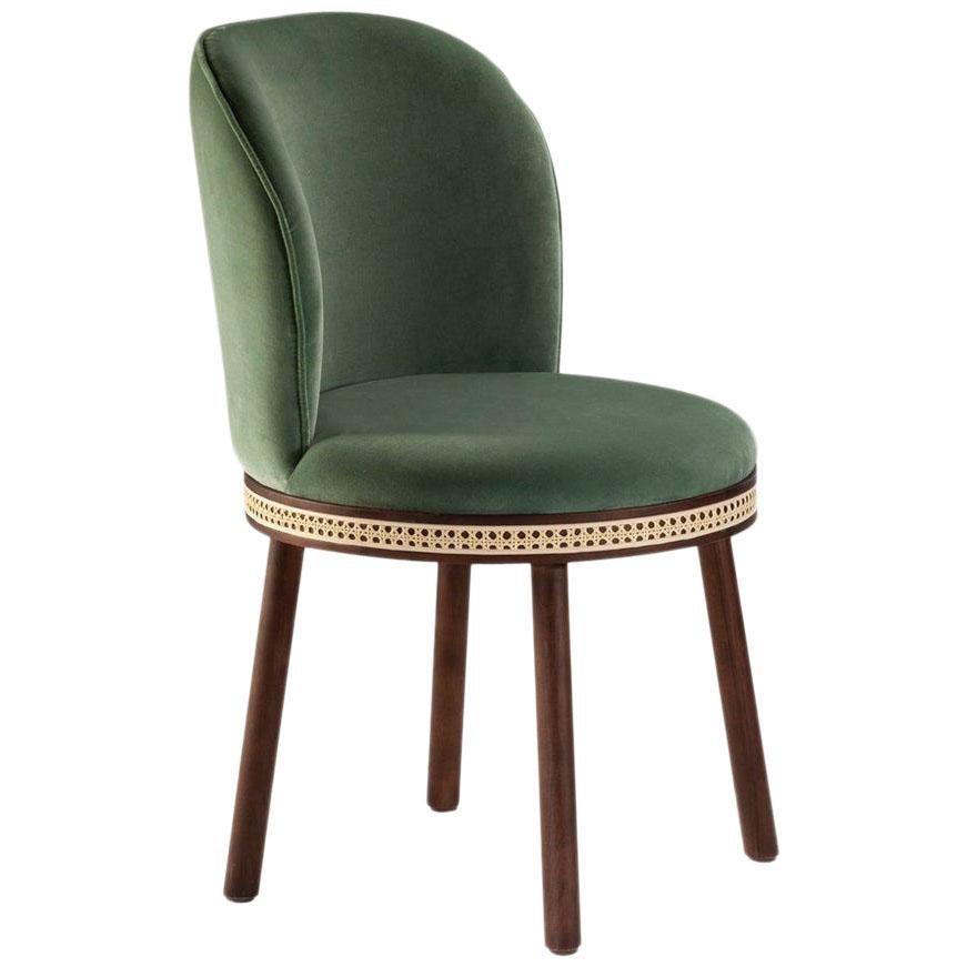 Mid-Century Modern Dinning Chair Alma with Soft Cotton Velvet, Walnut and Brass