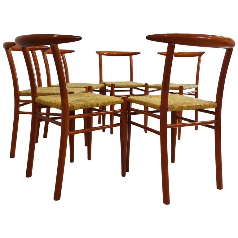 Dining Chairs - 6 Philippe Starck Aleph Tessa Nature Chairs for Driade For Sale